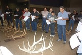 Hard antler competition